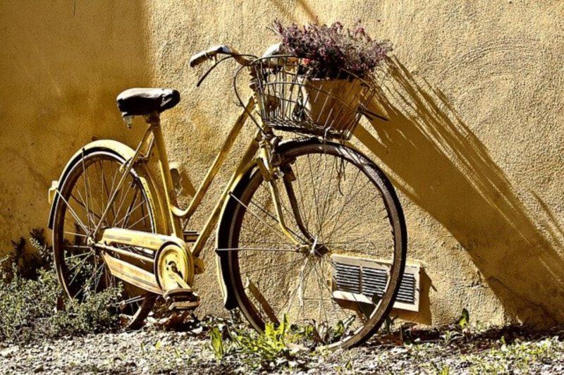 Rower i jego budowa