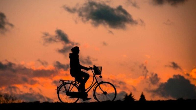 Jaki licznik rowerowy wybrać?